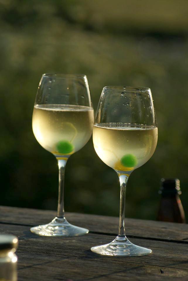 "Botānikas taka un vīni ""Drubazas"""