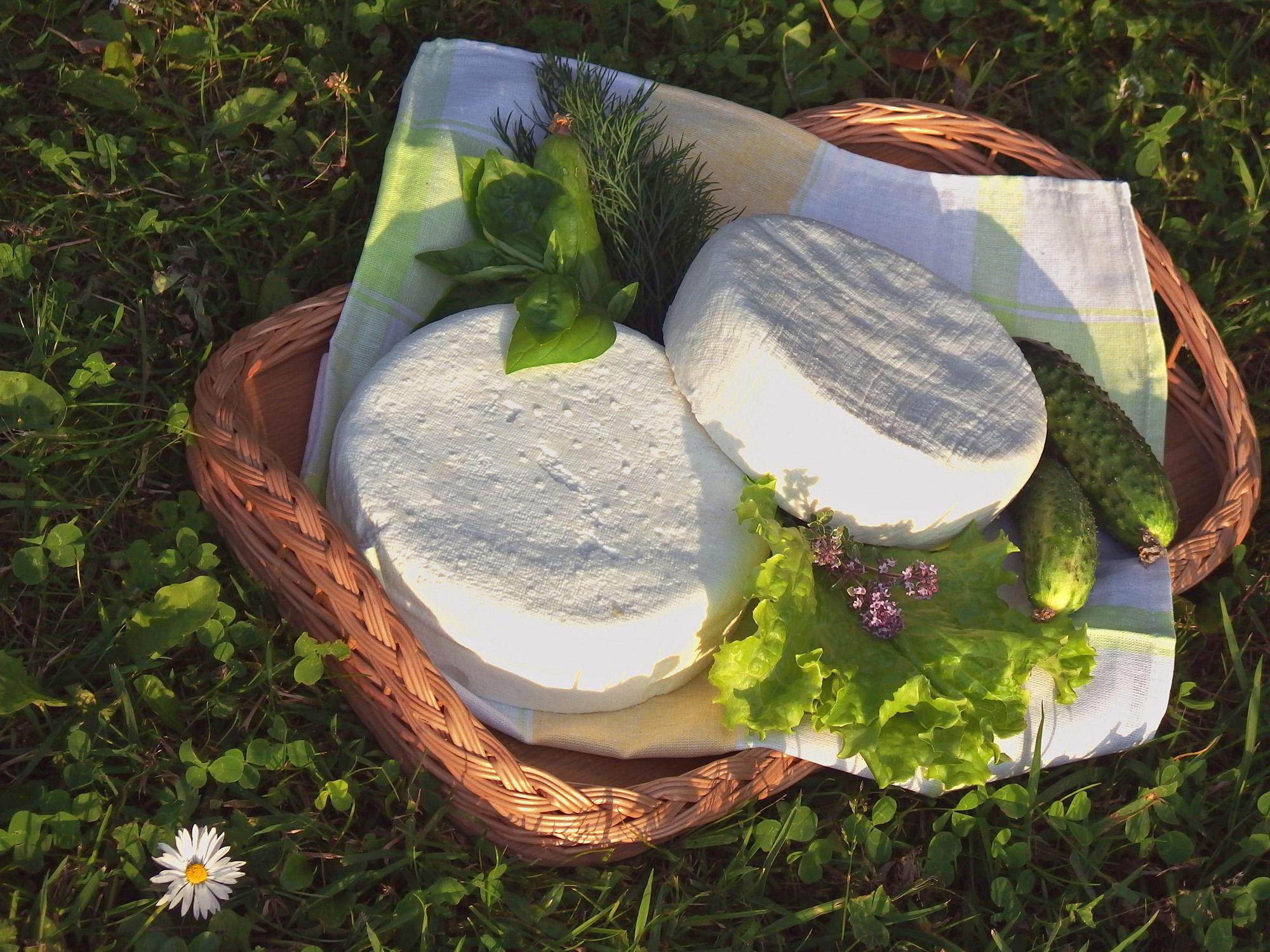 Kazas piena un biškopības produkti Dundagas tirgū